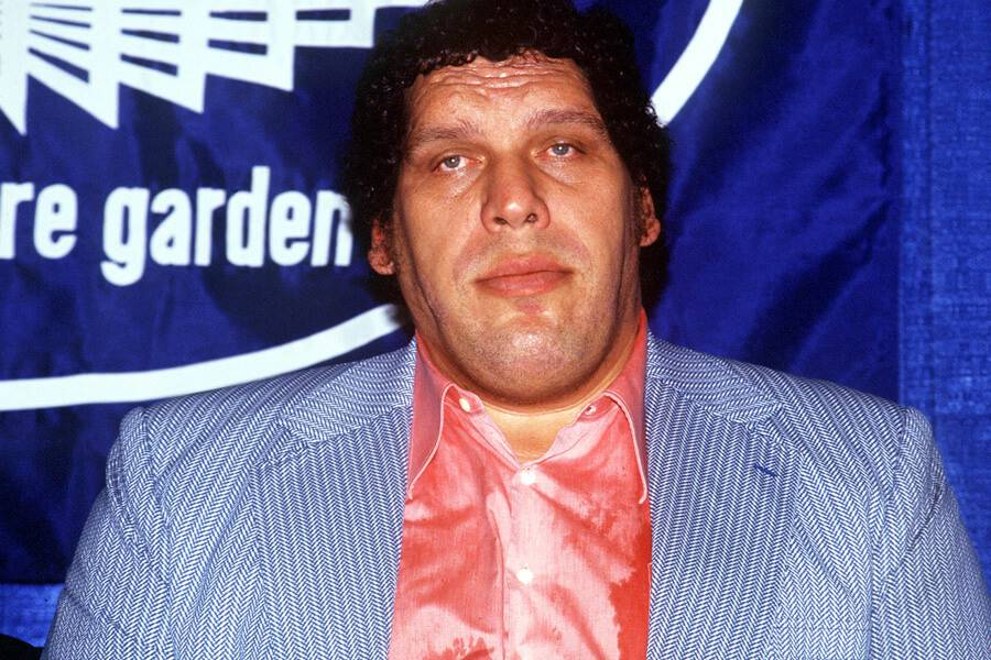 andre the giant in blue jacket and pink shirt