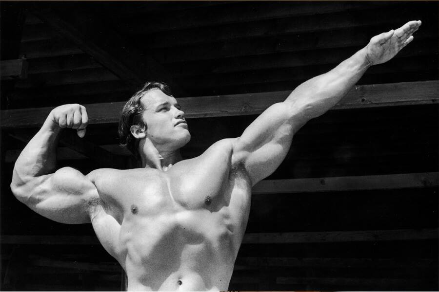 arnold-schwarzenegger posing shirtless