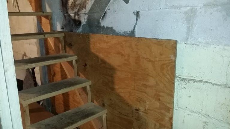 secret-door-basement-48804