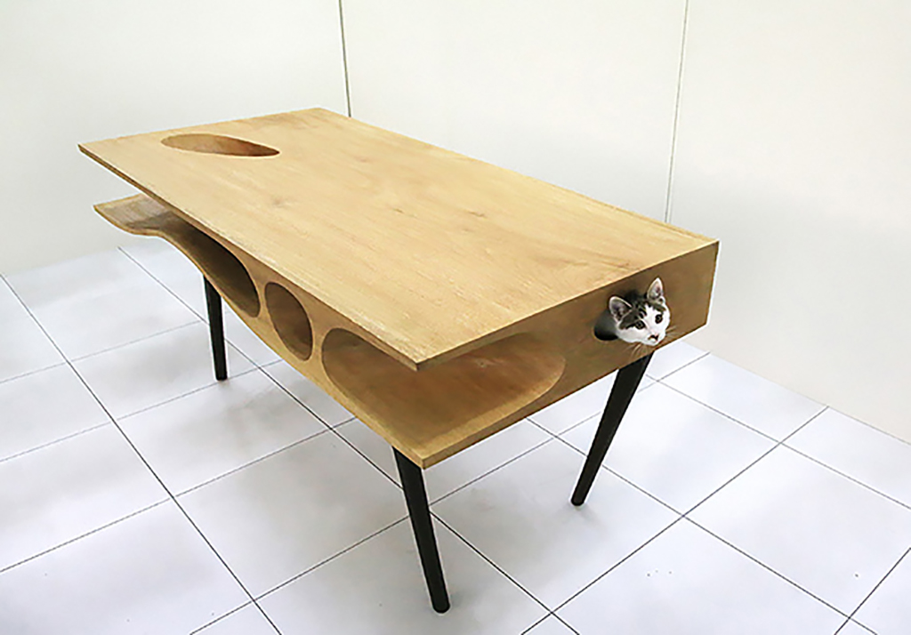 Cat inside of a desk