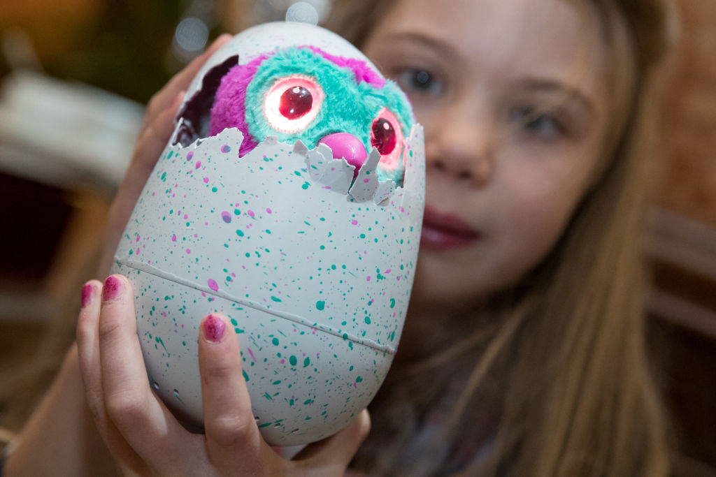 A young girl holds her Hatchimal egg while it breaks to reveal the toy underneath.