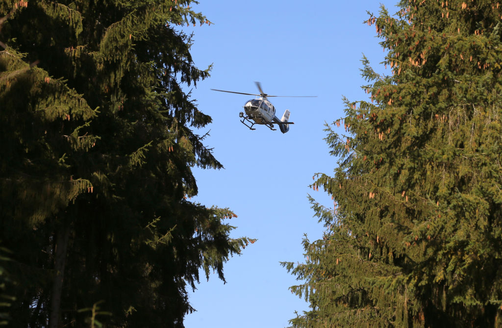 A helicopter flies between two forest trees.