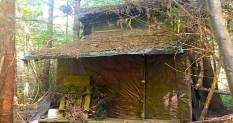 He Found A Mysterious Cabin Hidden In The Trees