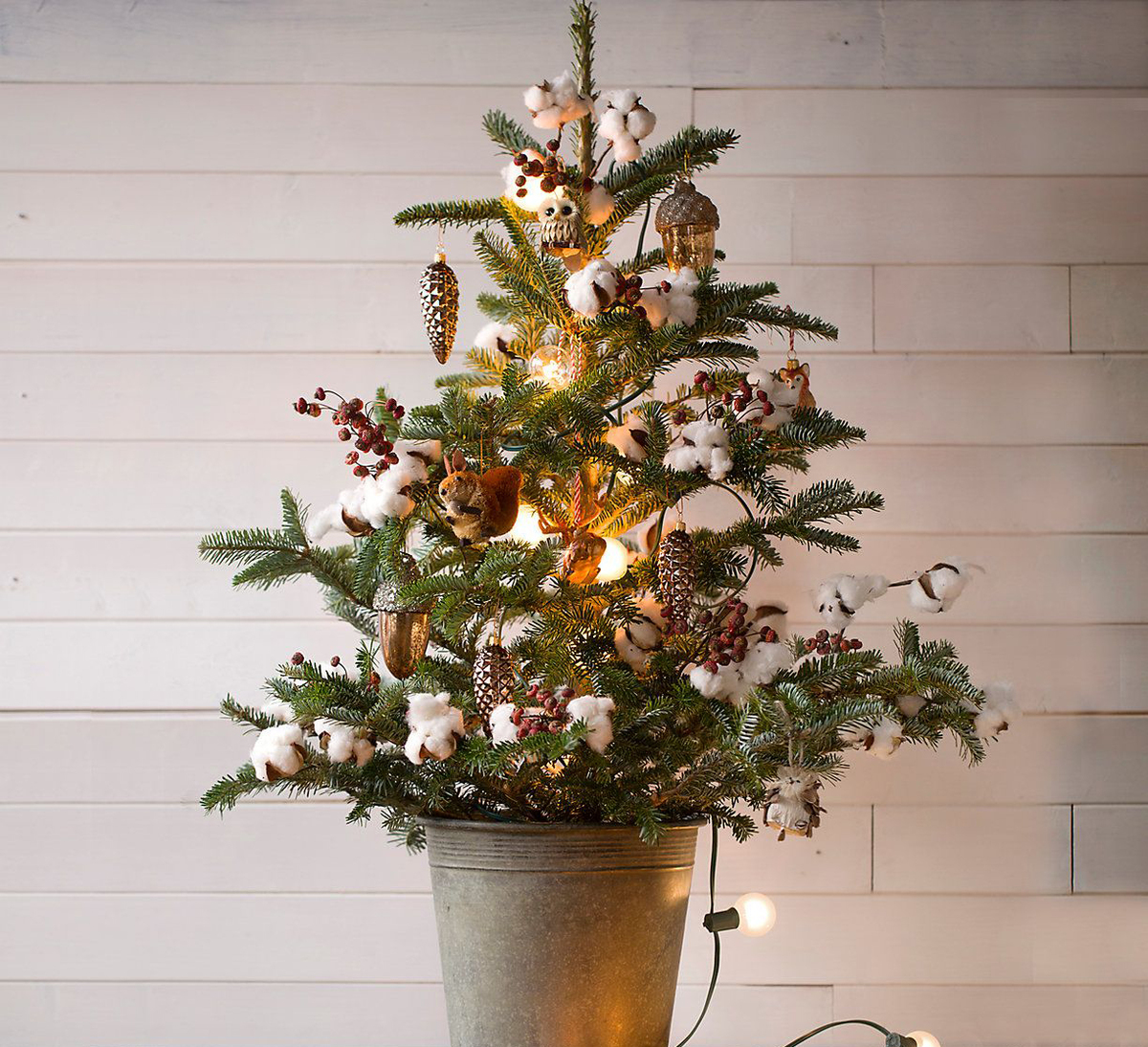 A small tree is dressed with nature-inspired decorations.