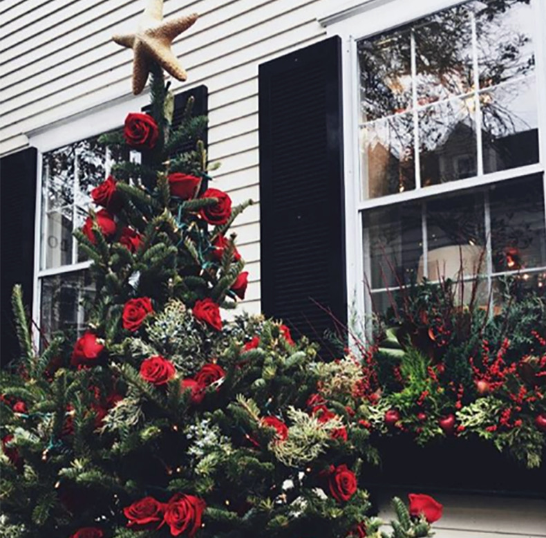 An outdoor Christmas tree is covered in roses.