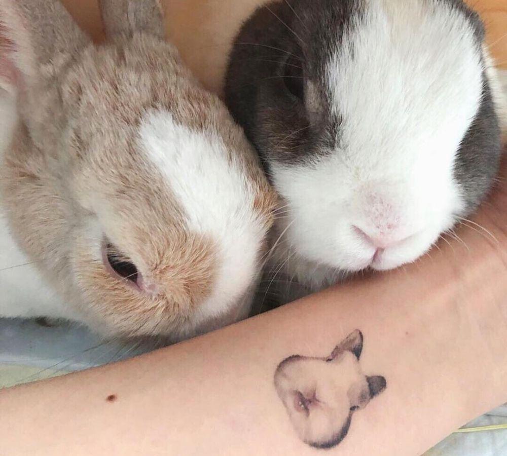 rabbit tattoo with rabbits