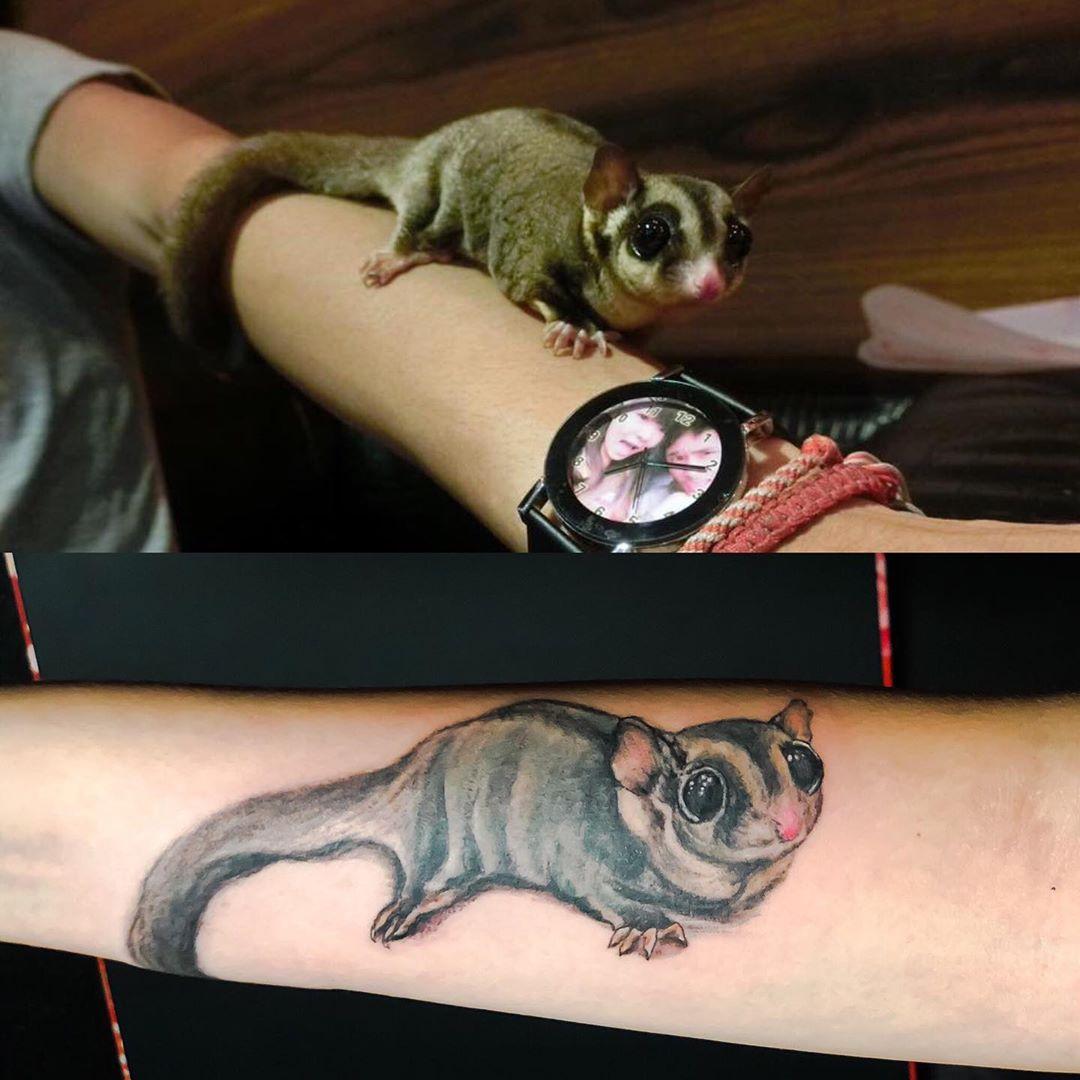 sugar glider tattoo