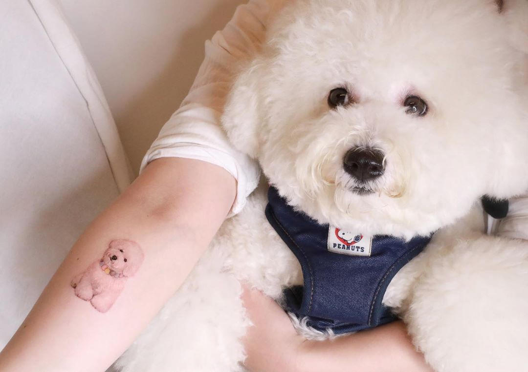 little bichon frise tattoo