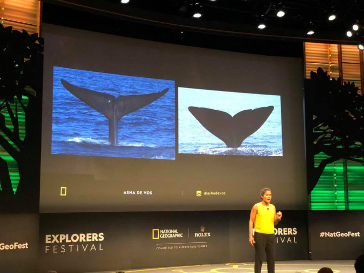 asha de vos gives a lecture about whales