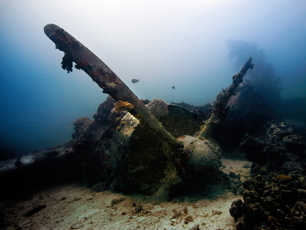 A Japanese military plane from World War II is at the bottom of the ocean.
