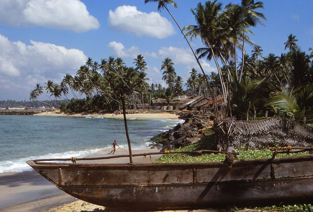 the sri lankan coastline