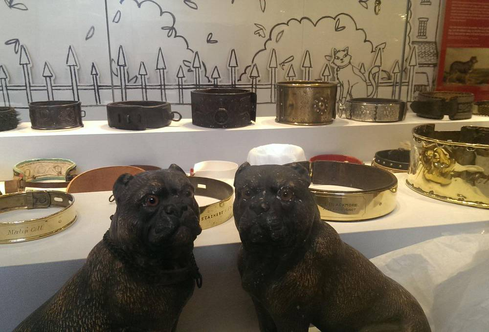 Dog statues and collars are seen inside the Kent Dog Collar Museum.