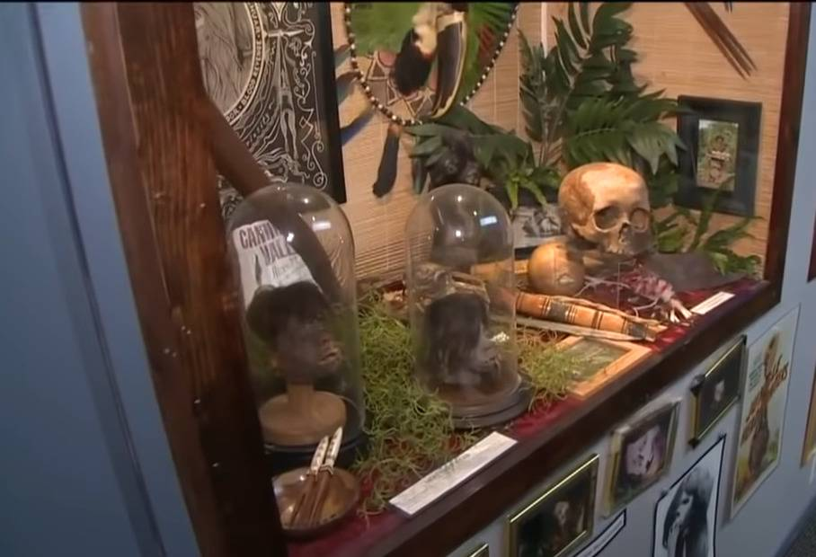An exhibit of skulls is on display at the Museum of Death in Los Angeles.