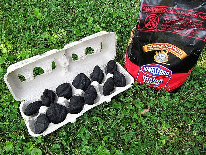 charcoal-egg-carton