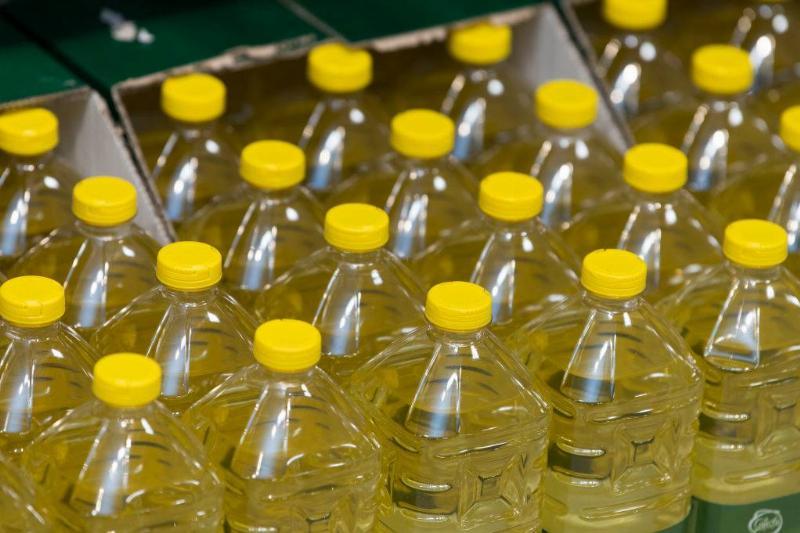 olive oil bottles lined up