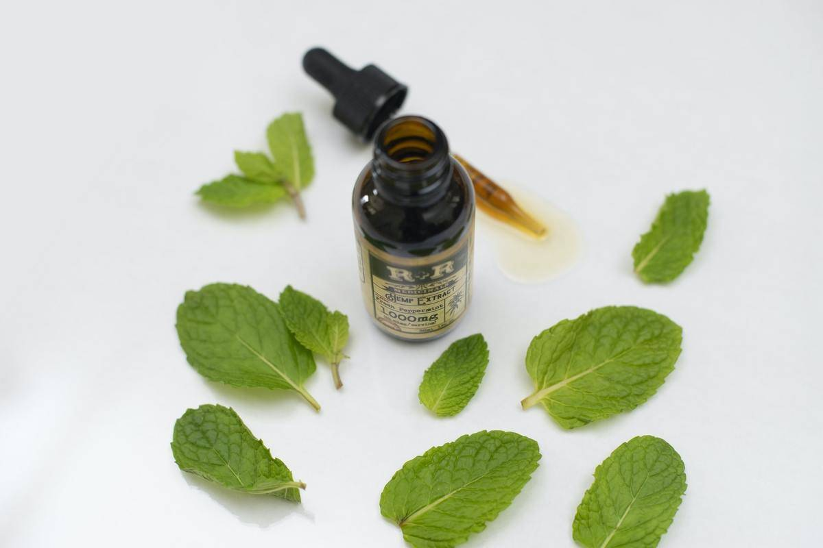 Peppermint leaves lay around a vial of peppermint oil.