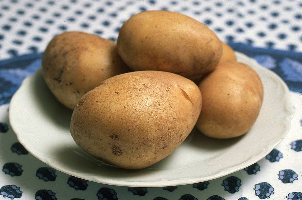 potatoes on a white plate