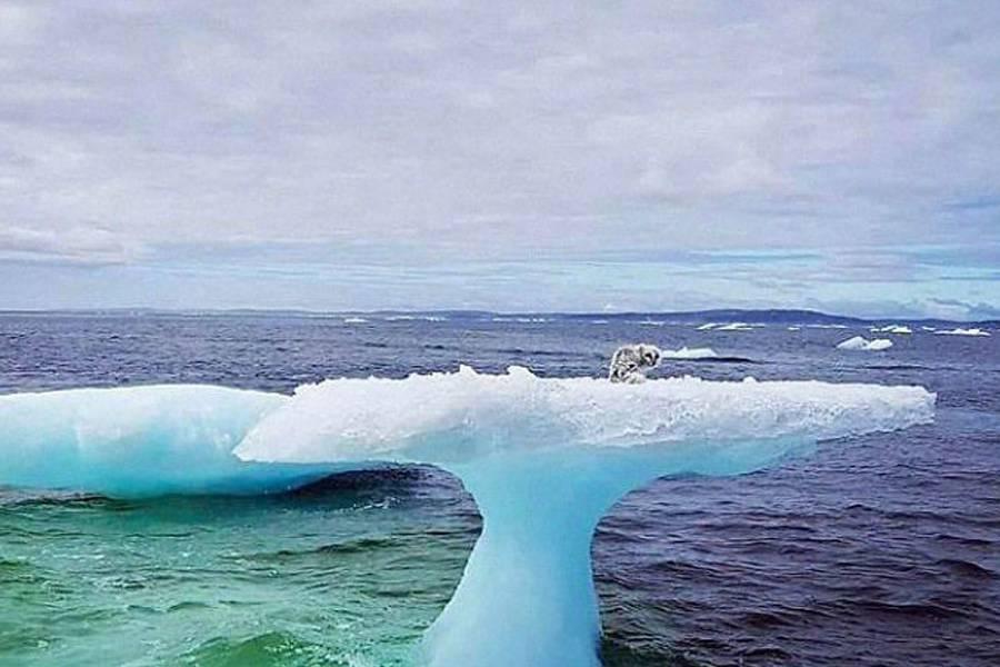 fisherman-iceberg-mystery-discovery-12670