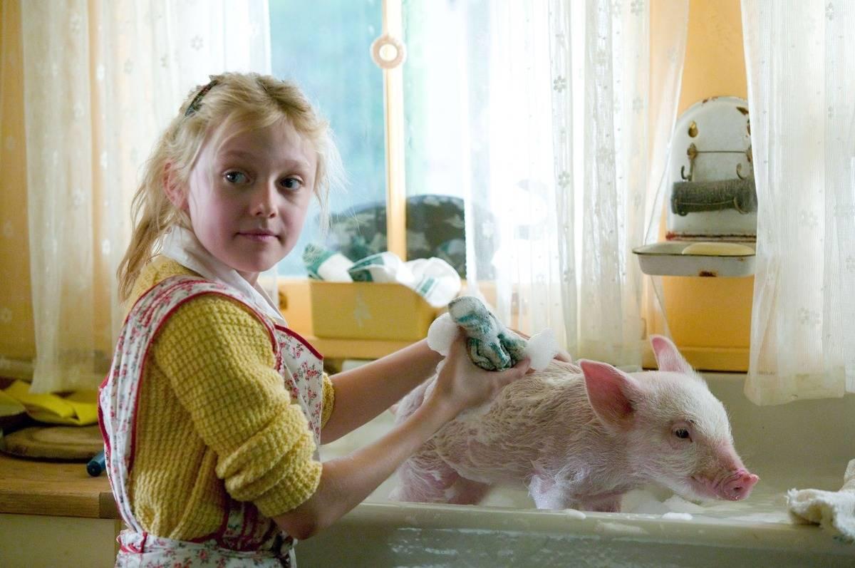 dakota fanning washing a pig in a sink in charlotte's web