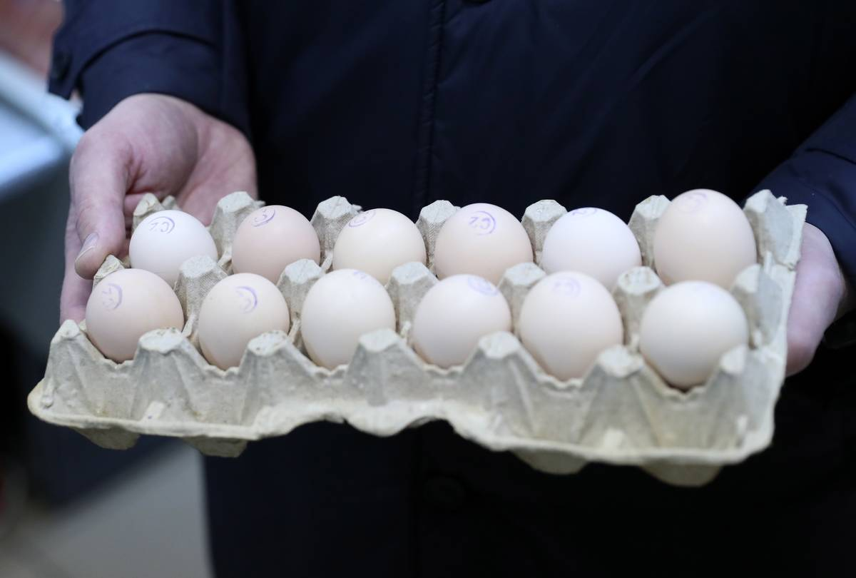 Stock Up And Then Freeze Eggs