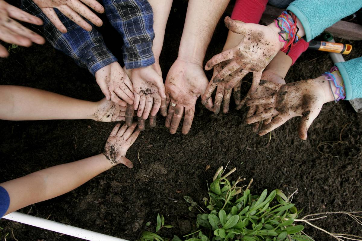 Adults and children put their hands in the dirt together while gardening.