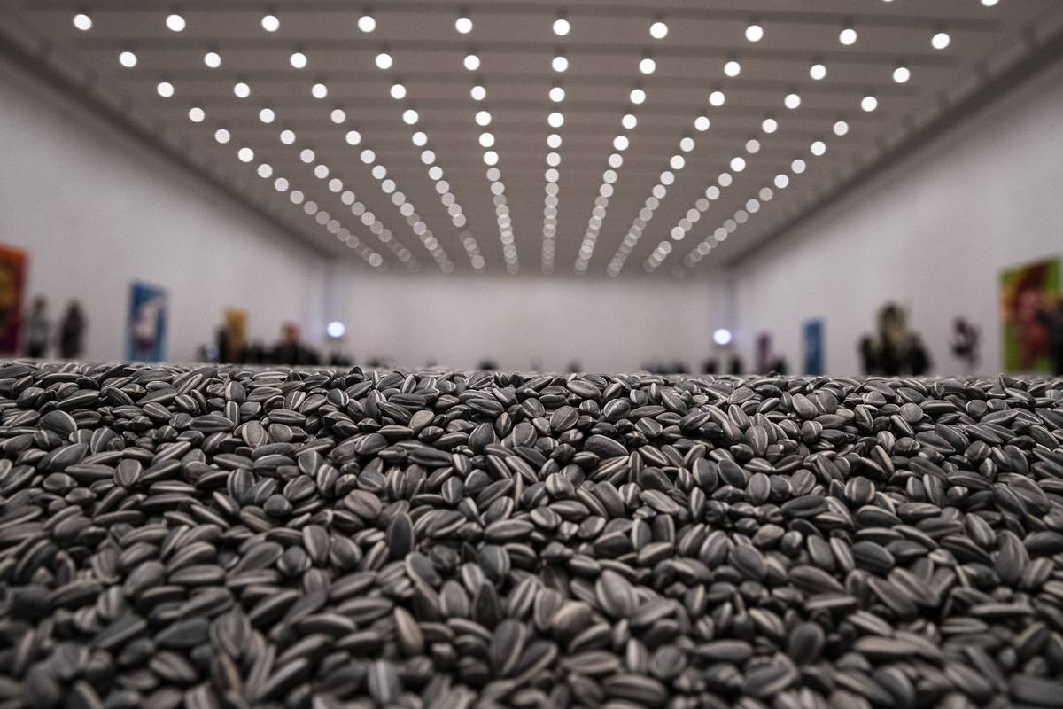 A close-up of seeds is seen at a museum in Germany.