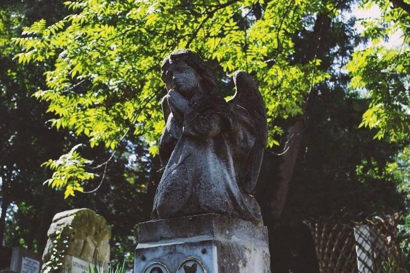 child-grave-33816