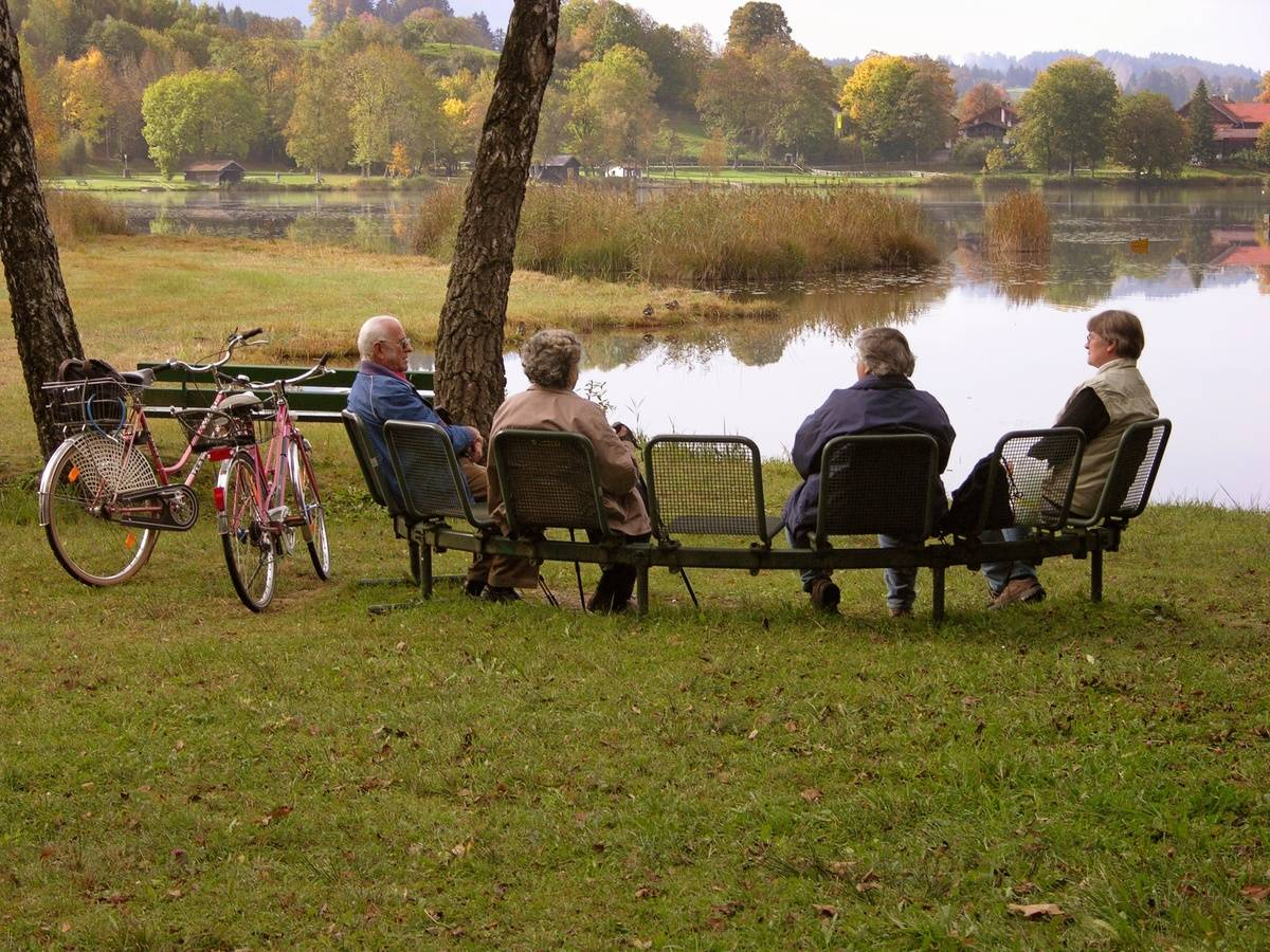 Elderly people sit near a lake and chat.