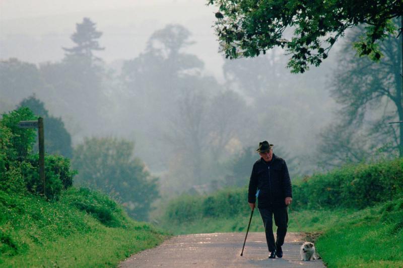 An elderly man walks his dog alone.