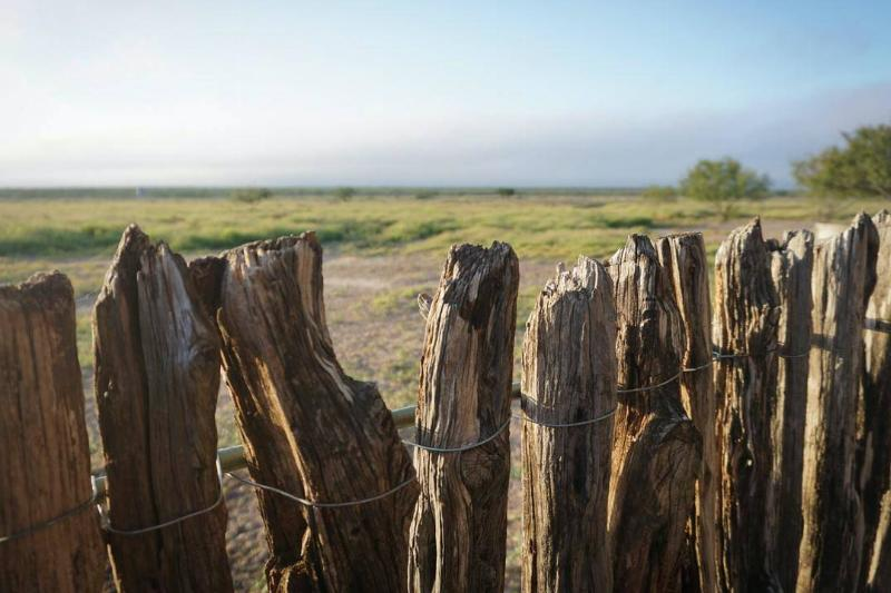 A rickety wooden fence stands in front of a nature reserve.