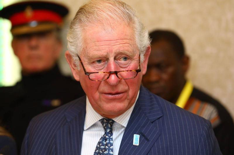 Prince Charles attends the WaterAid water and climate event, 2020.