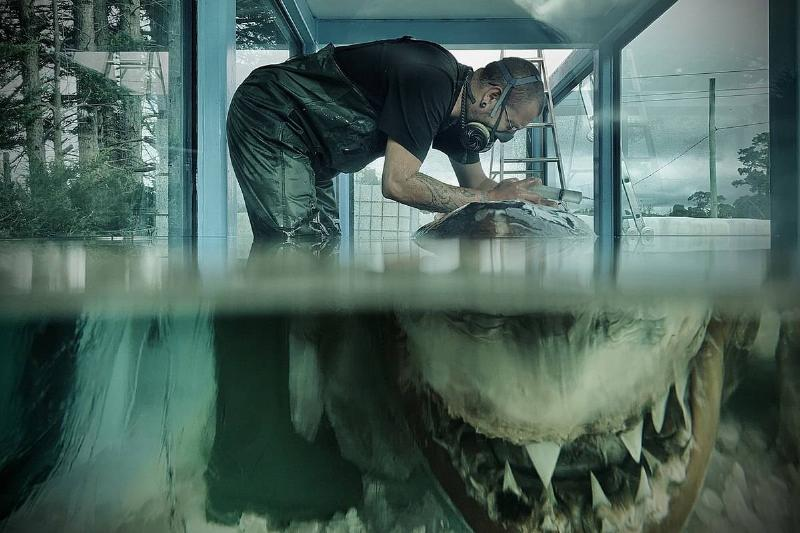 a man working on rosie the shark's new tank by injecting her with glycerol