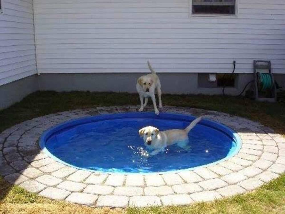 in-ground-kiddie-pool