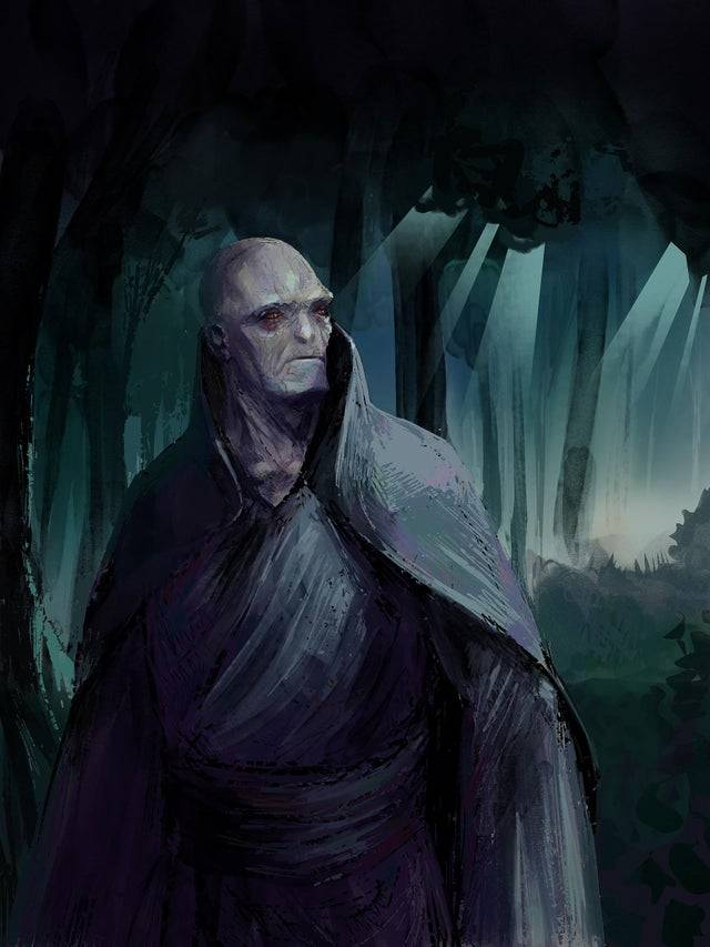 what voldemort should have looked like