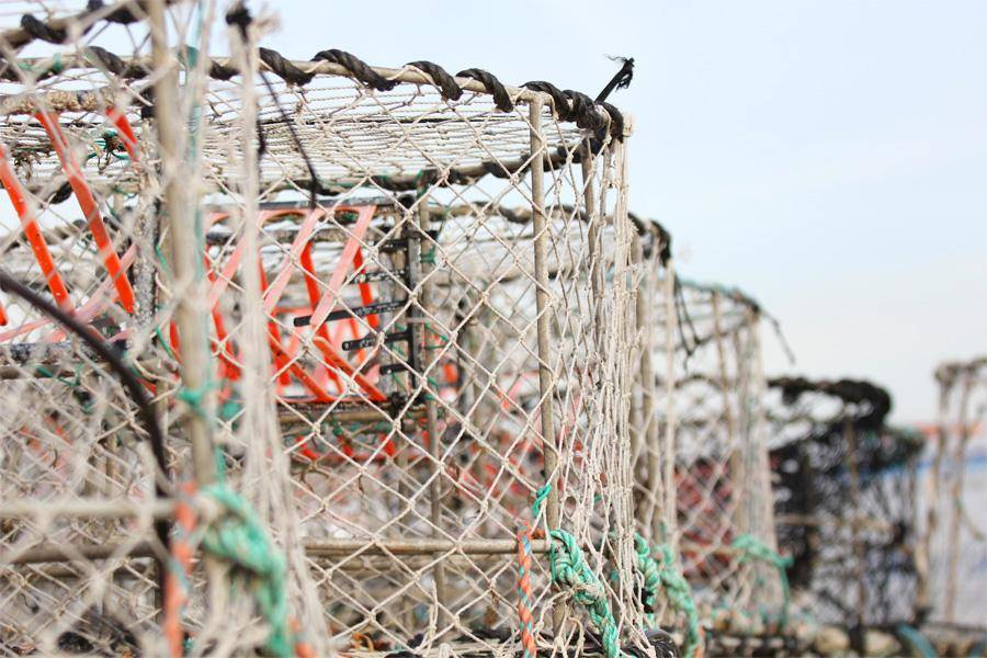 crab-cages-lined-up-on-boat-83046