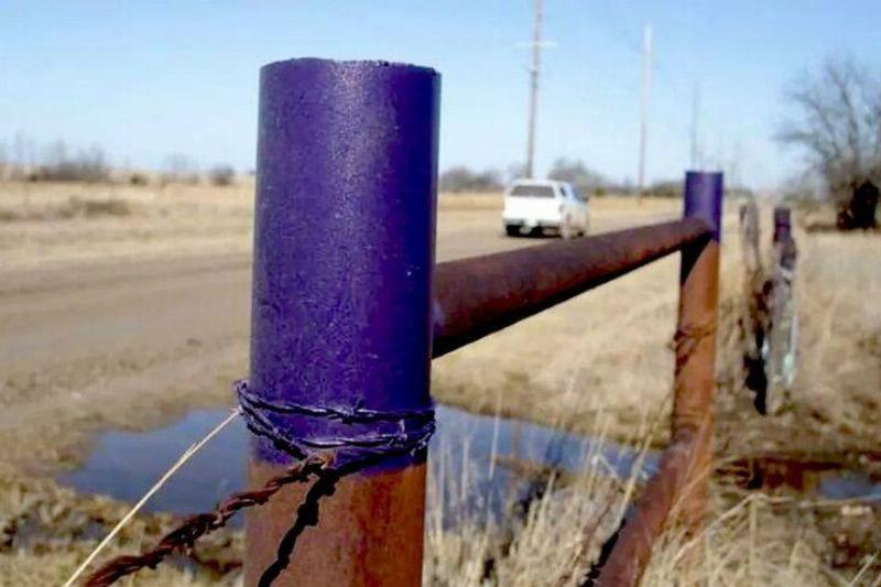 purple-fence-in-the-south-768w