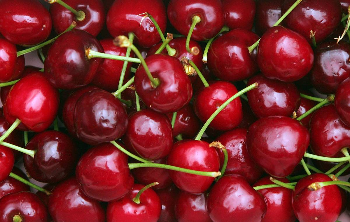 A close-up photo shows a box full of cherries.