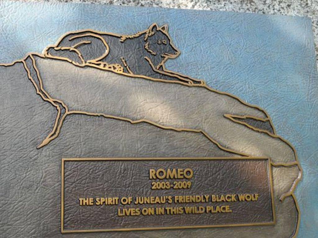 romeo-10-98003