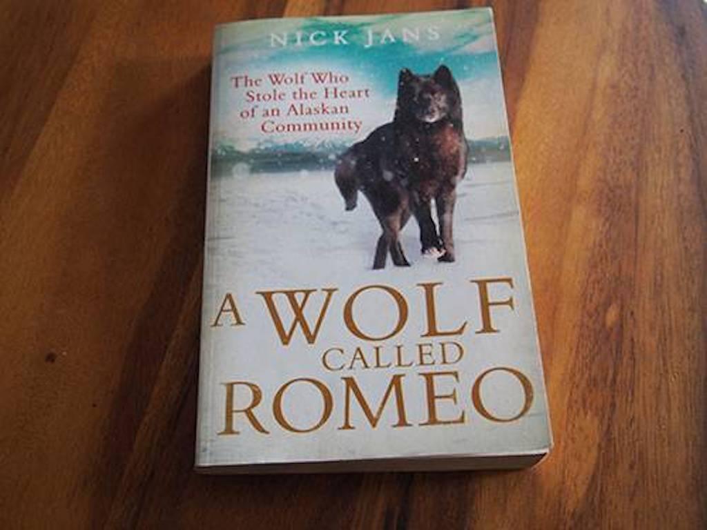wolf-called-romeo-1-80865