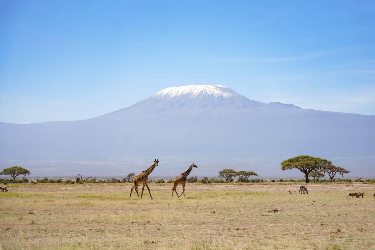 AFRICA-NATURAL LANDSCAPE-CULTURAL CUSTOM