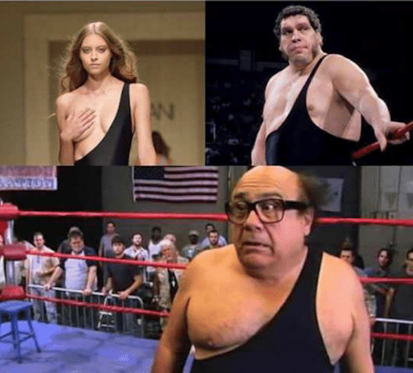 Andre the Giant and Danny Devito.jpg