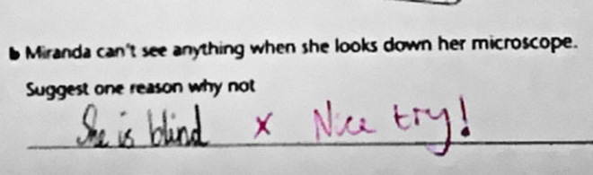 brilliant-kids-test-answers-33.jpg