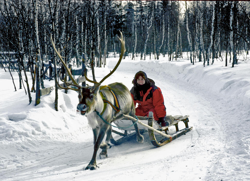Reindeer-sled-ride-.jpg