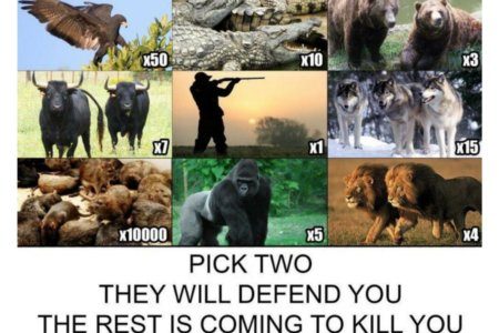 People Were Asked To Pick Two To Defend Themselves Against The Rest, And The Internet Has Never Been More Divided 3