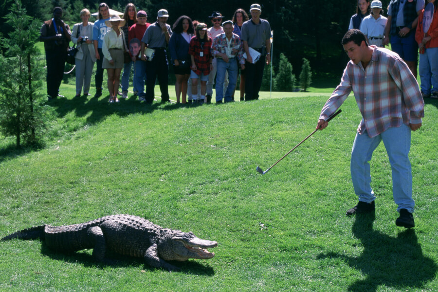 happy gilmore golf management.jpg
