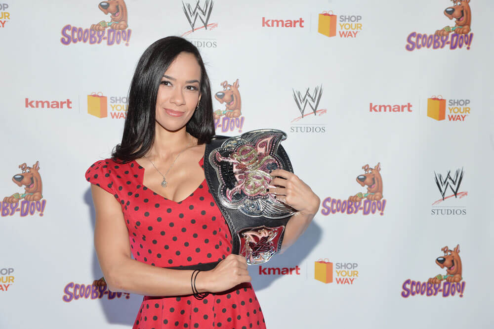 AJ Lee The Producer/Screenwriter/Author